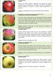 Résumé sur les variétés de fruitiers.x