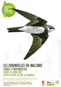 """Soirée d'information : """"Les hirondelles en Wallonie"""" @ centre culturel de Frameries (Eugies)   Frameries   Wallonie   Belgique"""