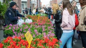 Floralies (Marché aux fleurs de Quiévrain) @ Dans les rues du centre-ville de Quiévrain